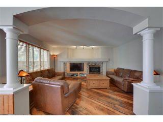Photo 14: 83 MT SELKIRK Close SE in Calgary: McKenzie Lake House for sale : MLS®# C4066159