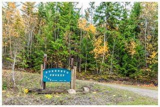 Photo 41: 1546 Blind Bay Road in Blind Bay: Vacant Land for sale : MLS®# 10125568
