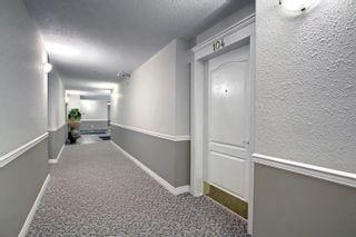 Photo 41: 104 8909 100 Street in Edmonton: Zone 15 Condo for sale : MLS®# E4262789