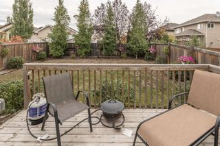 Photo 31: 2 NORWOOD Close: St. Albert House for sale : MLS®# E4241282