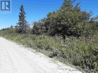 Photo 4: Lot Long Cove Road in Port Medway: Vacant Land for sale : MLS®# 202106718