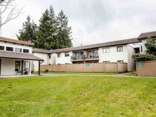 """Photo 16: 206 5191 203 Street in Langley: Langley City Townhouse for sale in """"Longlea"""" : MLS®# R2422119"""