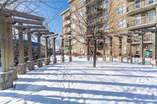 Photo 23: 2-514 4245 139 Avenue in Edmonton: Zone 35 Condo for sale : MLS®# E4227193