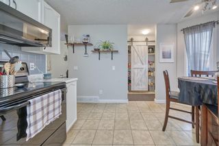 Photo 29: 39 Erin Green Way SE in Calgary: Erin Woods Detached for sale : MLS®# A1118796