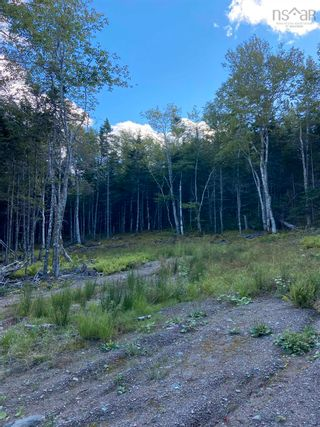 Photo 7: Lot 35 Wall Street in Cape George: 305-Richmond County / St. Peters & Area Vacant Land for sale (Highland Region)  : MLS®# 202123287