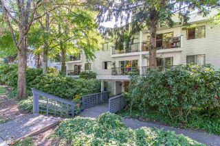 """Photo 1: 105 428 AGNES Street in New Westminster: Downtown NW Condo for sale in """"SHANLEY MANOR"""" : MLS®# R2408805"""