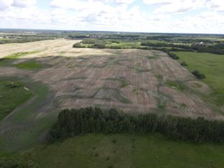 Photo 5: 51478 Rg Rd 231: Rural Strathcona County Rural Land/Vacant Lot for sale : MLS®# E4263127