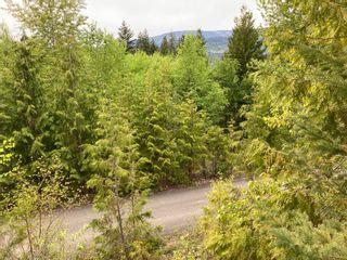 Photo 8: Lot 5 McBride: Blind Bay Land Only for sale (Shuswap)  : MLS®# 10231300
