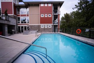 """Photo 22: 301 2238 WHATCOM Road in Abbotsford: Abbotsford East Condo for sale in """"WATERLEAF"""" : MLS®# R2492483"""