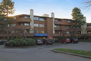 """Photo 10: 302 7295 MOFFATT Road in Richmond: Brighouse South Condo for sale in """"DORCHESTER CIRCLE"""" : MLS®# V931295"""