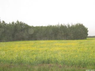 Photo 3: Tobin Lake Acreage Plot ( 5 Acres) in Moose Range: Lot/Land for sale (Moose Range Rm No. 486)  : MLS®# SK839734