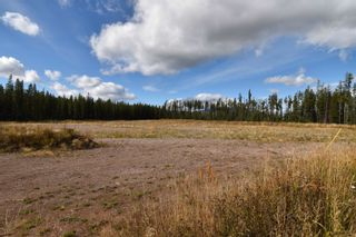 Photo 2: 10955 SKILLHORN Road: Telkwa Land Commercial for sale (Smithers And Area (Zone 54))  : MLS®# C8040361