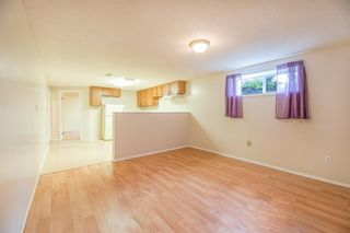 Photo 19: 6772 Malvern Road NE in Calgary: Marlborough Park Detached for sale : MLS®# A1134321