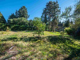 Photo 4: 3388 KRAUS Road: Roberts Creek House for sale (Sunshine Coast)  : MLS®# R2501149