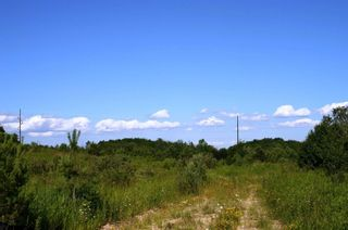 Photo 9: 475547 County Road 11 in Amaranth: Rural Amaranth Property for sale : MLS®# X4667613