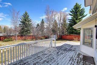Photo 21: 117 Hawkford Court NW in Calgary: Hawkwood Detached for sale : MLS®# A1103676