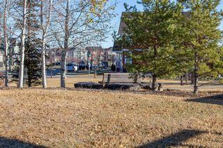 Photo 49: 230 Auburn Bay Boulevard SE in Calgary: Auburn Bay Detached for sale : MLS®# A1045900