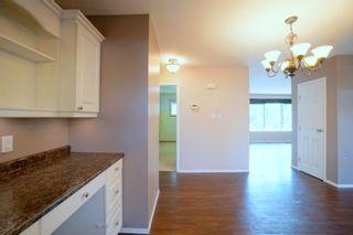 Photo 19: 36 Radisson Ave in Portage la Prairie: House for sale : MLS®# 202119264