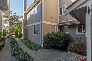 Photo 3: 3643 W 2ND Avenue in Vancouver: Kitsilano 1/2 Duplex for sale (Vancouver West)  : MLS®# R2004250