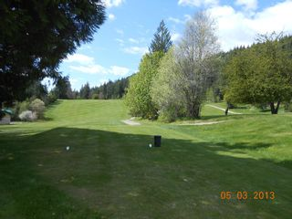 Photo 7: 7423 Anglemont Way in Anglemont: North Shuswap Land Only for sale (Shuswap)  : MLS®# 10097623
