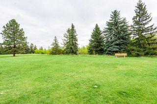 Photo 47: 9349 74 Avenue in Edmonton: Zone 17 House for sale : MLS®# E4246636