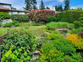 """Photo 33: 8102 WILTSHIRE Place in Delta: Nordel House for sale in """"CANTERBURY HEIGHTS"""" (N. Delta)  : MLS®# R2586961"""