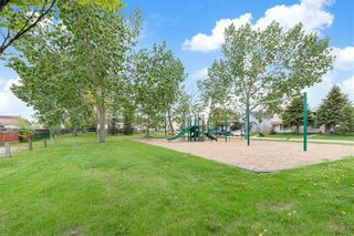 Photo 27: 43 ABERDARE Road NE in Calgary: Abbeydale Detached for sale : MLS®# C4301204