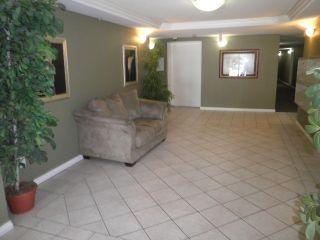 Photo 15: 206 22255 122 Avenue in Maple Ridge: West Central Condo for sale : MLS®# R2086650
