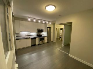 """Photo 3: 501 9025 HIGHLAND Court in Burnaby: Simon Fraser Univer. Condo for sale in """"Highland House"""" (Burnaby North)  : MLS®# R2527975"""