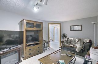 Photo 19: 2735 41A Avenue SE in Calgary: Dover Detached for sale : MLS®# A1082554