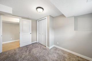 Photo 27: 28 Falton Mews NE in Calgary: Falconridge Detached for sale : MLS®# A1144383