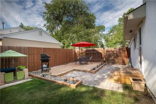 Photo 6: 177 Danbury in Winnipeg: Crestview Residential for sale (5H)  : MLS®# 202017884