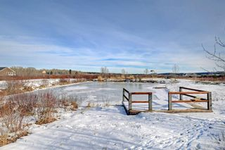 Photo 31: 186112 256 Street W: Priddis Detached for sale : MLS®# A1050704