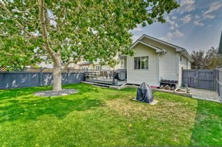 Photo 5: 12528 Coventry Hills Way NE in Calgary: Coventry Hills Detached for sale : MLS®# A1135702