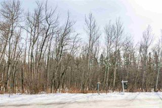 Photo 9: 4519 DONSDALE Drive in Edmonton: Zone 20 Vacant Lot for sale : MLS®# E4227514