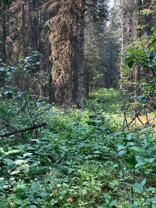 Photo 16: .. None: Bragg Creek Residential Land for sale : MLS®# A1131758