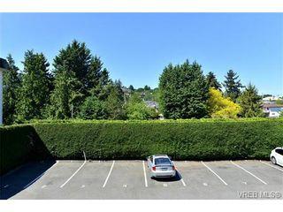 Photo 9: 202 3880 Shelbourne St in VICTORIA: SE Cedar Hill Condo for sale (Saanich East)  : MLS®# 730920