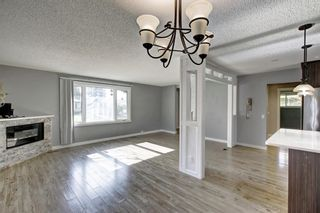 Photo 10: 4604 Maryvale Drive NE in Calgary: Marlborough Detached for sale : MLS®# A1090414