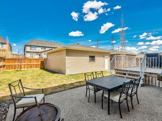 Photo 19: 149 Rainbow Falls Glen: Chestermere Detached for sale : MLS®# A1104325