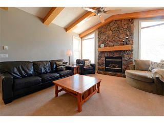 Photo 15: 94 SIMCOE Circle SW in Calgary: Signature Parke House for sale : MLS®# C4006481