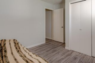 Photo 17: 3109 4975 130 Avenue SE in Calgary: McKenzie Towne Apartment for sale : MLS®# A1097325