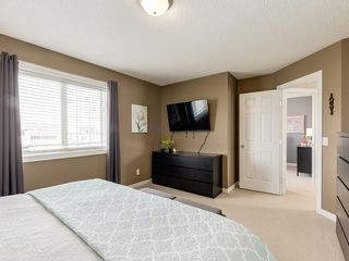 Photo 28: 140 BAYSIDE Point SW: Airdrie Detached for sale : MLS®# C4304964