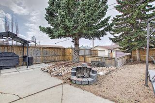 Photo 40: 367 Maitland Crescent NE in Calgary: Marlborough Park Detached for sale : MLS®# A1093291