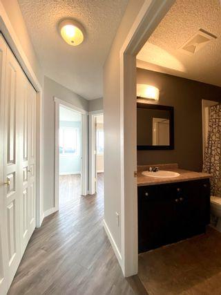 Photo 26: 11 VENTURA Street: Spruce Grove House Half Duplex for sale : MLS®# E4266429