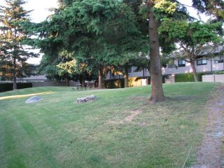 "Photo 48: 46 6712 BAKER Road in Delta: Sunshine Hills Woods Townhouse for sale in ""SUNRIDGE ESTATES"" (N. Delta)  : MLS®# F2912502"