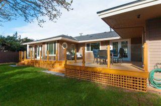 Photo 13: 1091 SKANA DRIVE in Tsawwassen: English Bluff House for sale : MLS®# R2288202