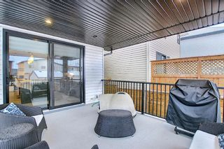 Photo 24: 16 Walden Mount SE in Calgary: Walden Residential for sale : MLS®# A1053734