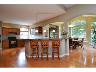 Photo 8: 10351 167A ST in Surrey: Fraser Heights House for sale (North Surrey)  : MLS®# F1422176