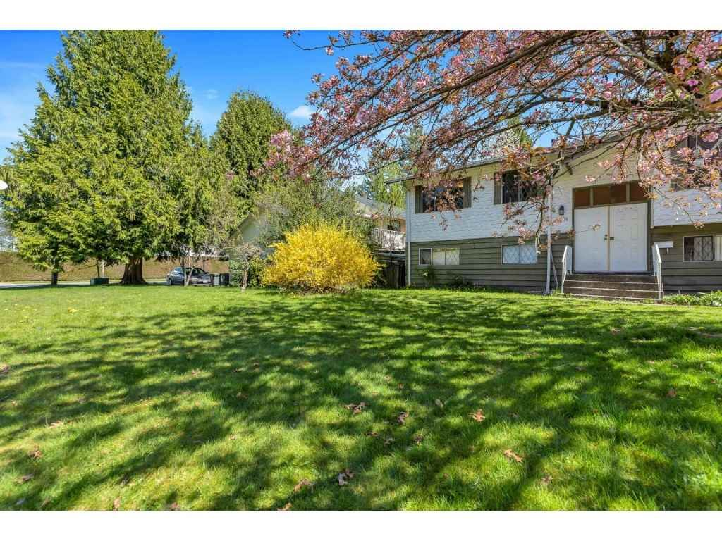 Photo 15: Photos: 10276 145 Street in Surrey: Guildford House for sale (North Surrey)  : MLS®# R2566192