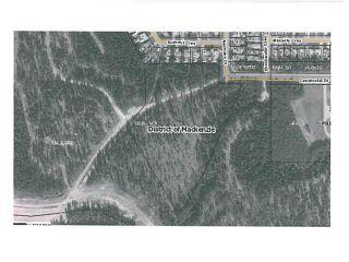 """Photo 9: LOT 4 BELL Place in Mackenzie: Mackenzie -Town Land for sale in """"BELL PLACE"""" (Mackenzie (Zone 69))  : MLS®# N227296"""